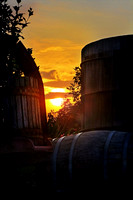 Sunset Wine Casks